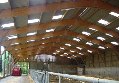 B timents agricoles et industriels nailweb - Batiment bois agricole ...